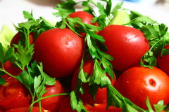 Fresh tomatoes and herbs. Are on the table tomatoes and greens Royalty Free Stock Photography