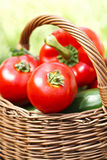 Fresh Tomatoes In A Wicker Basket Royalty Free Stock Photography