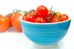 Fresh Tomatoes. Incorporate fresh tomatoes into your everyday meals Stock Image