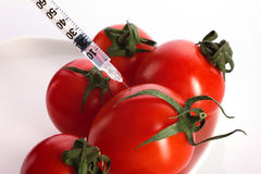 Fresh tomatoes  injection Stock Photography