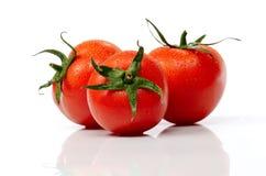 Fresh tomatoes isolated on white background Royalty Free Stock Photography