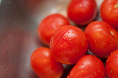 Fresh tomatoes in kitchen Royalty Free Stock Photography