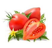 Fresh tomatoes with leaves isolated on white Royalty Free Stock Image