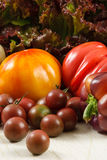 Fresh Tomatoes And Lettuce Stock Photography