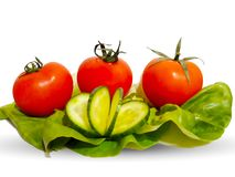 Fresh tomatoes on lettuce leaves royalty free stock photography