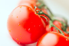 Fresh tomatoes macro Royalty Free Stock Photography