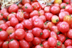 Fresh tomatoes in the market.  Royalty Free Stock Images