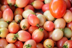 Fresh tomatoes in the market Royalty Free Stock Photos