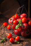 Fresh tomatoes in a metal basket Royalty Free Stock Photos