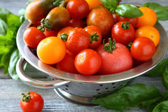 Fresh tomatoes in a metal colander Stock Images