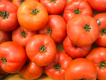 Fresh tomatoes in organic farmer market Royalty Free Stock Images