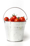 Fresh tomatoes in a pail on white background Royalty Free Stock Photo