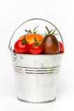 Fresh tomatoes in a pail on white background Royalty Free Stock Image