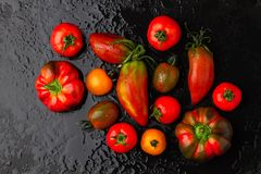 Fresh tomatoes and peppers on a black background Royalty Free Stock Image
