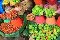 Tomatoes and peppers at a Mexican market Royalty Free Stock Photo