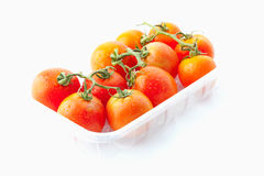 Fresh tomatoes in plastic container Stock Image