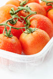 Fresh tomatoes in plastic container Royalty Free Stock Photos
