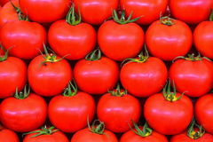 Fresh tomatoes. Fresh red cherry tomatoes stacked on the counter .organic and from the field Stock Images