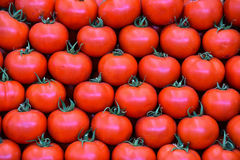 Fresh tomatoes. Fresh red cherry tomatoes stacked on the counter .organic and from the field stock photos