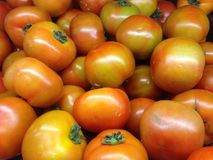 Fresh tomatoes. Fresh red tomatoes found in the market stock photography