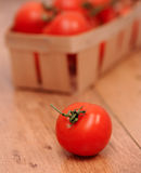 Fresh tomatoes. Ripe tomato on wooden cover close up, selective focus Royalty Free Stock Images