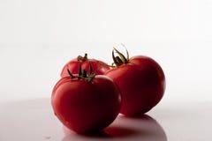 The fresh tomatoes Stock Photo
