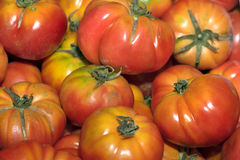 Fresh tomatoes on sale at Market Stock Photo
