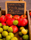 Fresh tomatoes for sale. Royalty Free Stock Photos