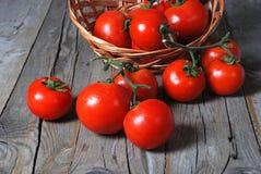 Fresh tomatoes in season on wood Stock Image