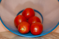 Fresh tomatoes in the sieve. And on wooden table Stock Images
