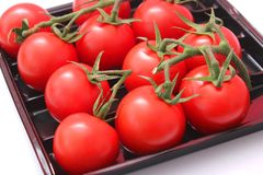 Fresh tomatoes. Some fresh tomatoes in a box Stock Images
