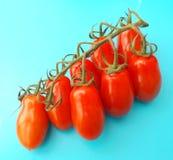 Fresh tomatoes Royalty Free Stock Photo