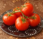 Fresh tomatoes. Some fresh tomatoes on a plate Royalty Free Stock Photos