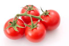 Fresh tomatoes. Some fresh red tomatoes on white royalty free stock photos