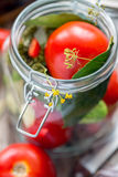 Fresh tomatoes and spices in a jar for canning. Stock Photography
