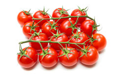 Fresh Tomatoes on the stalk Royalty Free Stock Photo