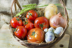 Fresh tomatoes on straw Royalty Free Stock Photography