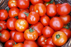 fresh tomatoes texture Royalty Free Stock Image