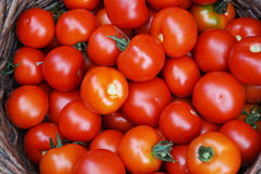 fresh tomatoes texture Royalty Free Stock Photography