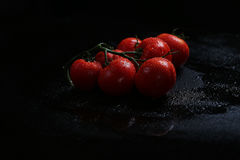 Fresh tomatoes under water drops Stock Photography