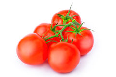 Fresh tomatoes on the vine Stock Images