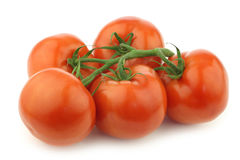 Fresh tomatoes on the vine Royalty Free Stock Photos