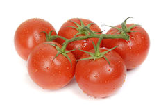 Fresh tomatoes on a vine Royalty Free Stock Image