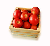 Fresh tomatoes on the vine in a wooden crate on a white backgrou Stock Photos