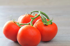 Fresh tomatoes with water droplets closeup, on the wooden kitchen table Royalty Free Stock Photos