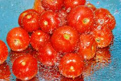 Fresh tomatoes in water and splashes Royalty Free Stock Photo