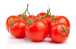 Fresh tomatoes,  on white background Stock Photos