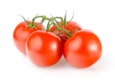Fresh Tomatoes. On White Background Royalty Free Stock Images