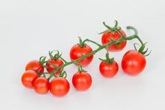 Fresh tomatoes on white background Stock Photos