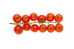 Fresh tomatoes on white isolate backgroun with clipping path. Royalty Free Stock Photos